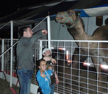 Dan, Little People and a Camel